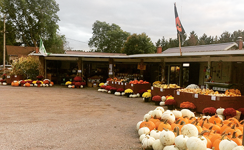 Visit our Campbellcroft location to enjoy our Fresh Ontario Produce